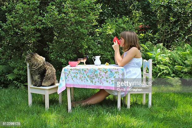 Sipping tea with a maine coon
