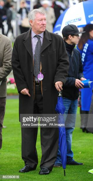Sir Alex Ferguson in the parade ring during day two of the October Finale 2013 meeting at York Racecourse York