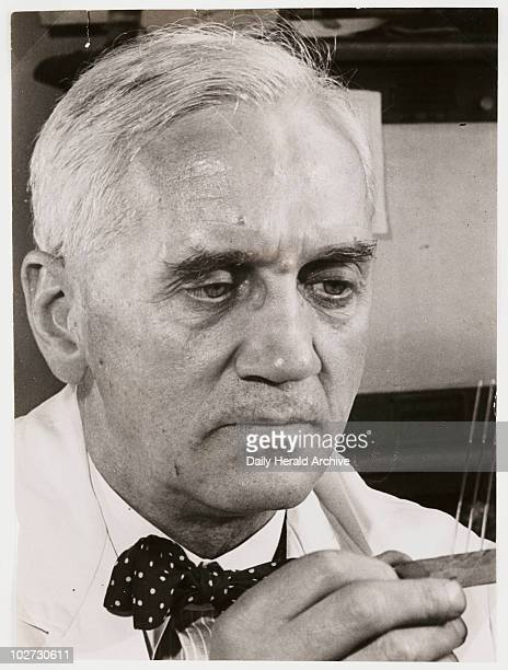 'Sir Alexander Fleming' 1945 A photograph of Professor Alexander Fleming [18811955] at work in his laboratory taken by James Jarche for the Daily...