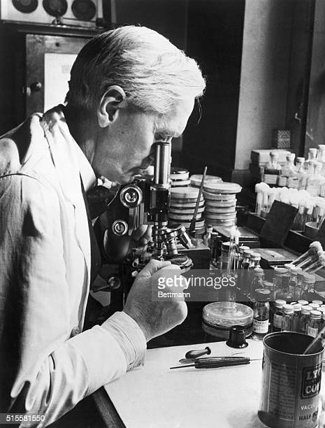 Sir Alexander Fleming at work in his laboratory in St Mary's Hospital London BPA