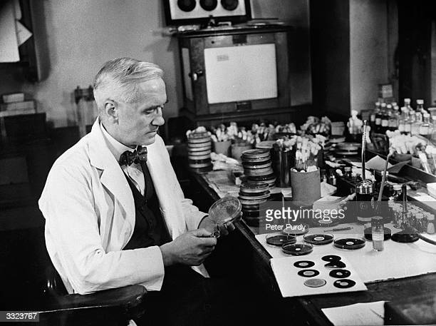 Sir Alexander Fleming discoverer of penicillin studies mould cultures in his laboratory at the Wright Fleming Institute in London Fleming also...