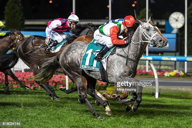 Sir Bacchus ridden by Kerrin McEvoy wins Yulong Park Handicap at Moonee Valley Racecourse on October 21 2016 in Moonee Ponds Australia