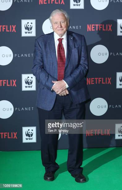 Sir David Attenborough attends Netflix's 'Our Planet' announcement at WWF's State of the Planet Address at Westminster Central Hall on November 8...