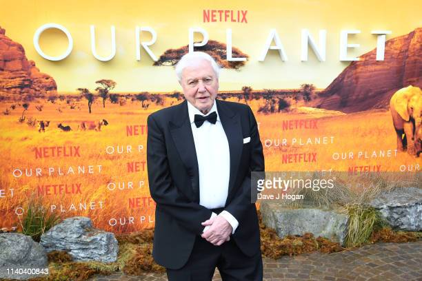 """Sir David Attenborough attends the """"Our Planet"""" global premiere at Natural History Museum on April 04, 2019 in London, England."""