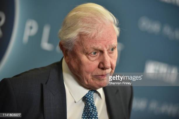 """Sir David Attenborough, narrator of Netflix's documentary series, """"Our Planet"""" , attends the Washington, DC premiere at Smithsonian's National Museum..."""