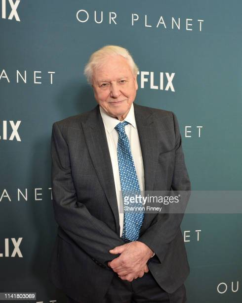 Sir David Attenborough narrator of Netflix's documentary series Our Planet attends the Washington DC premiere at Smithsonian's National Museum of...