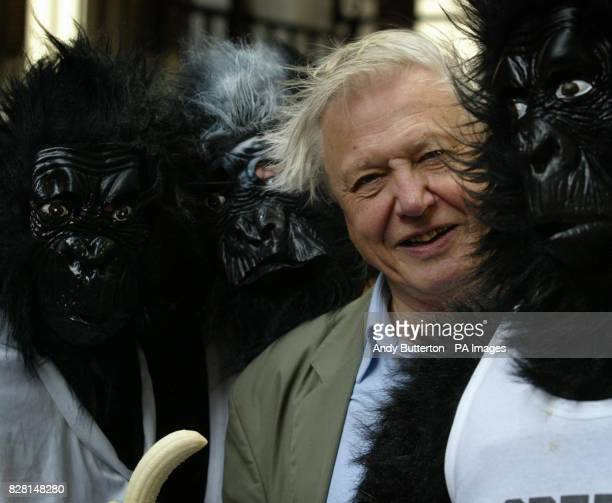 Sir David Attenborough with runners in Gorilla costume before they took part in the Great Gorilla Run across Tower Bridge Competitors had ran 7km...