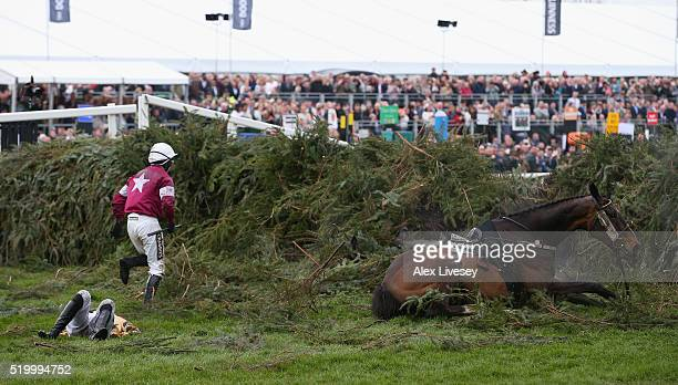 Sir Des Champs ridden by Nina Carberry and On His Own ridden by PW Mullins lie on the ground after falling at The Chair fence during Crabbie's Grand...