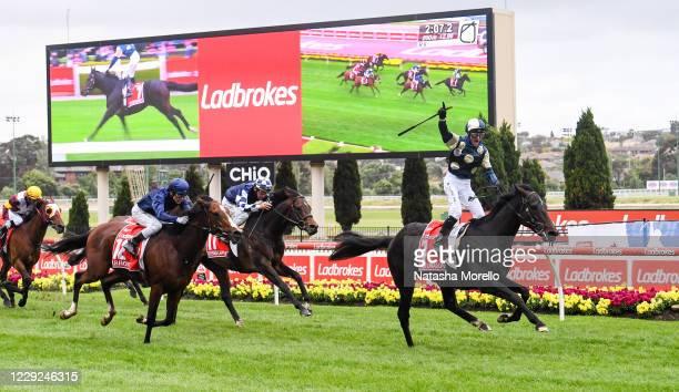 Sir Dragonet ridden by Glen Boss wins the Ladbrokes Cox Plate at Moonee Valley Racecourse on October 23, 2020 in Moonee Ponds, Australia.