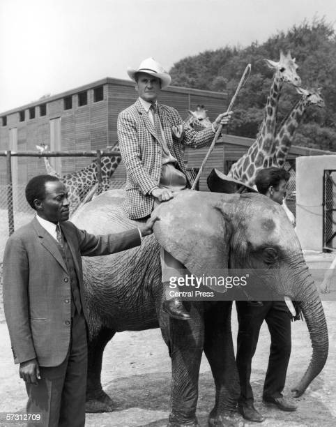 Sir Henry Frederick Thynne 6th Marquess of Bath mounted on baby African elephant Wamba at Longleat Safari Park his family seat in Wiltshire 29th May...
