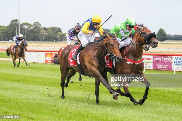 Sir Kalahad ridden by Brian Werner wins the njt20cricketcomau Maiden Plate at Sale Racecourse on January 21 2018 in Sale Australia