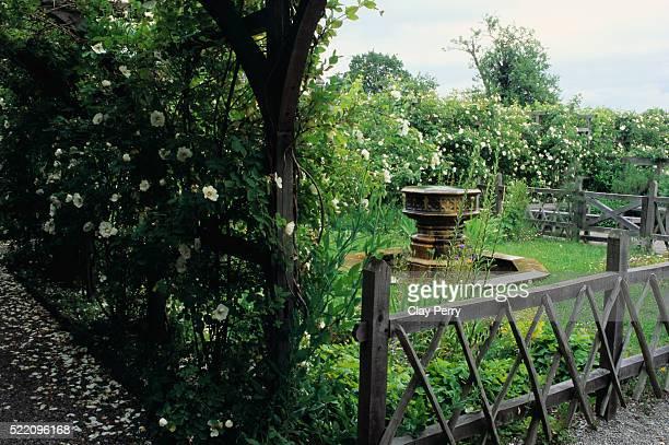 Sir Roger Vaughan's Medieval Garden