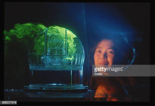Siri Limmonkol views a model of a 25meter telescope inside a water tank The tank is used to test the effects of air turbulence on the instrument |...