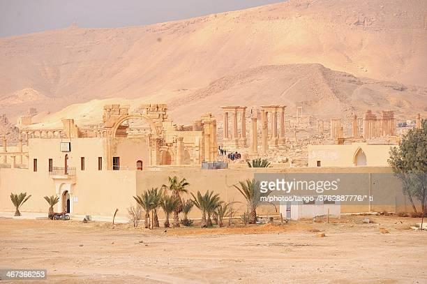 Siria, Palmira