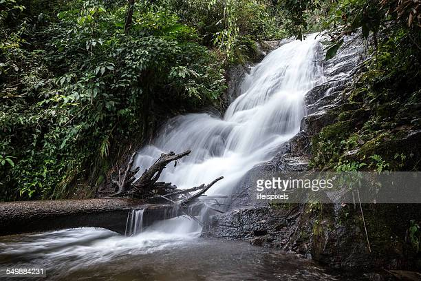 siribhume waterfall - lifeispixels stock pictures, royalty-free photos & images