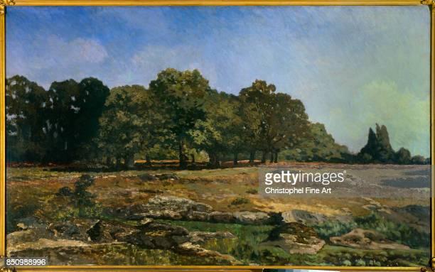 Sisley Alfred Avenue of Chestnut Trees near La Celle Saint Cloud 1865 Paris Musee Du Petit Palais