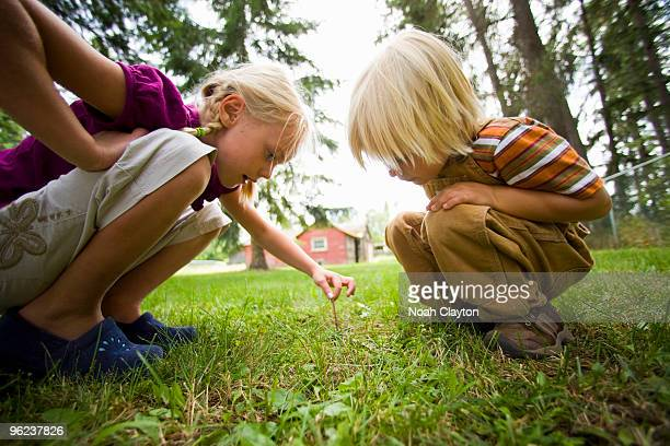 Sister and brother find earthworm in backyard.