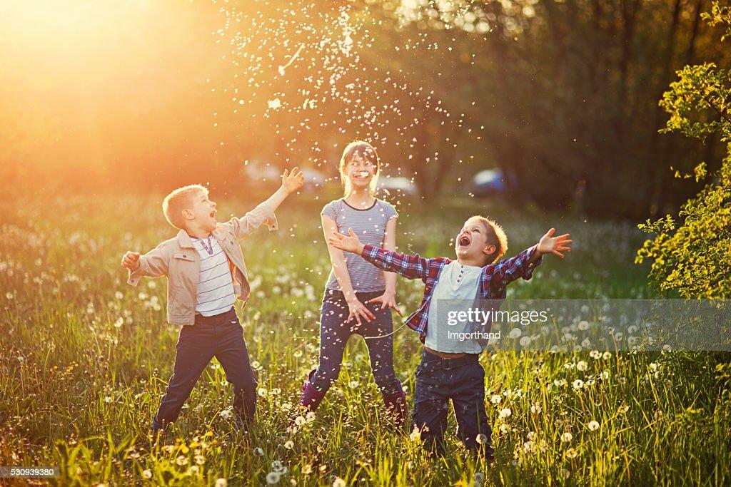 Schwestern und Brüder spielen mit Löwenzahn-Feld : Stock-Foto