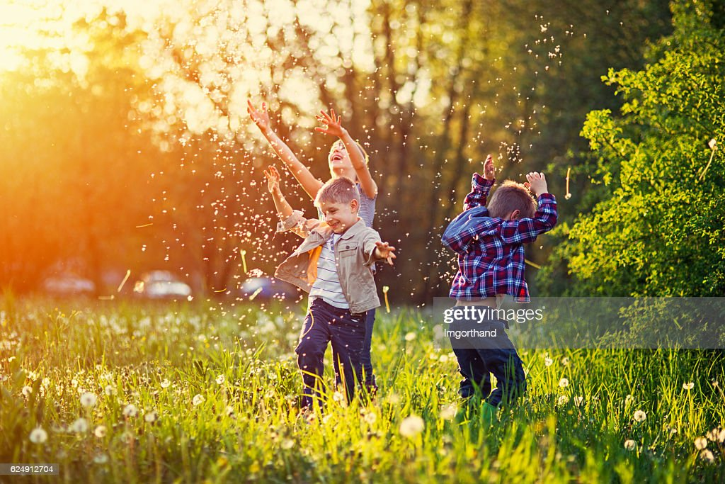 Sister and brothers playing in dandelion field : Stock Photo