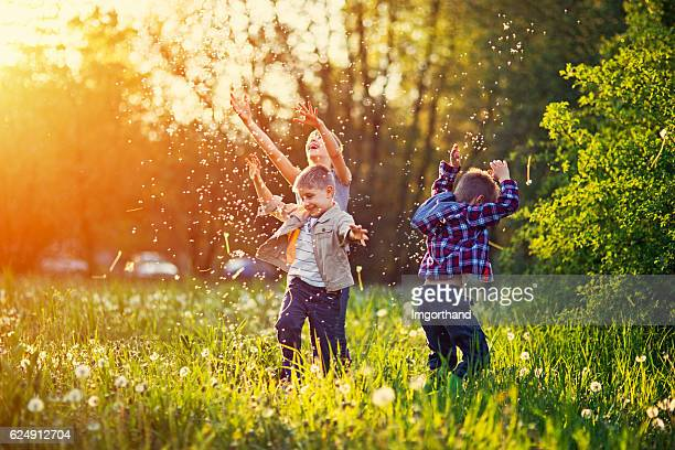sister and brothers playing in dandelion field - innocence stock pictures, royalty-free photos & images