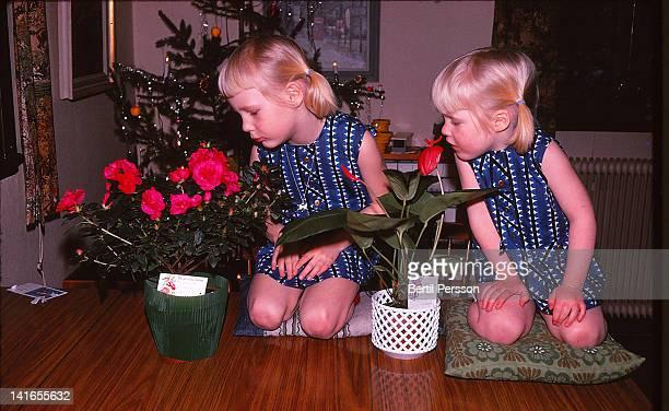 Sisters admiring Christmas flowers
