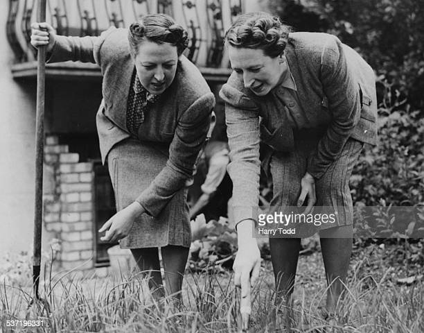 Sisters Elsie and Doris Waters comedy double act 'Gert and Daisy' at work on their allotment Regent's Park London July 16th 1940