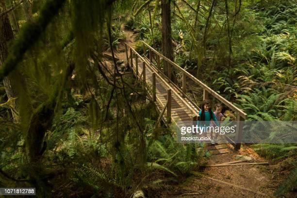 sisters hiking in a lush green forest - foresta temperata foto e immagini stock