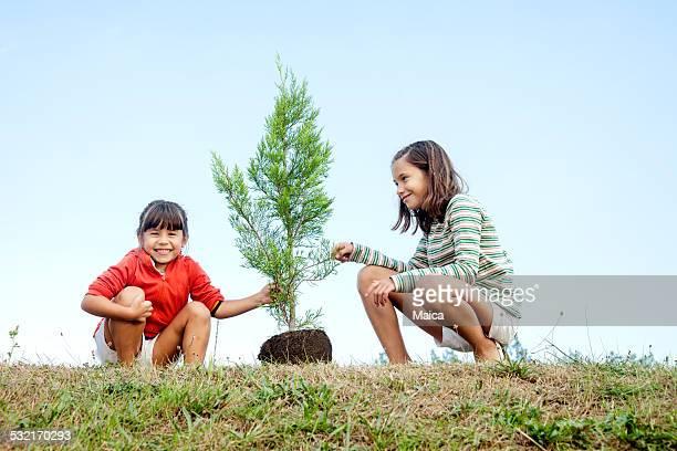 Hermanas plantando un árbol