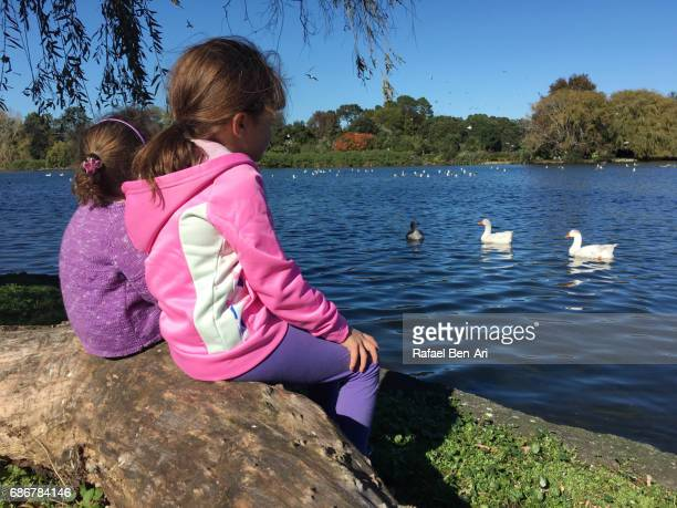 sisters watch water birds in a pond - rafael ben ari stock pictures, royalty-free photos & images