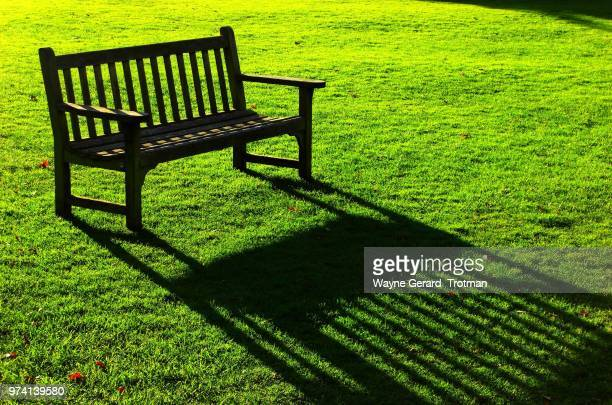 sit and dream of green - wayne gerard trotman stock pictures, royalty-free photos & images