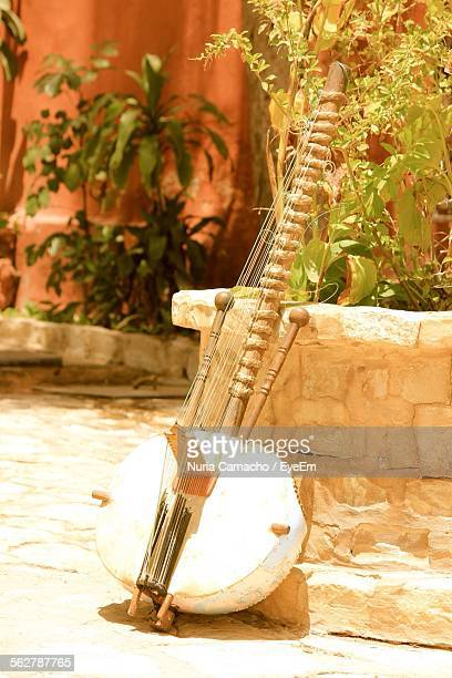 Sitar Leaning On Wall