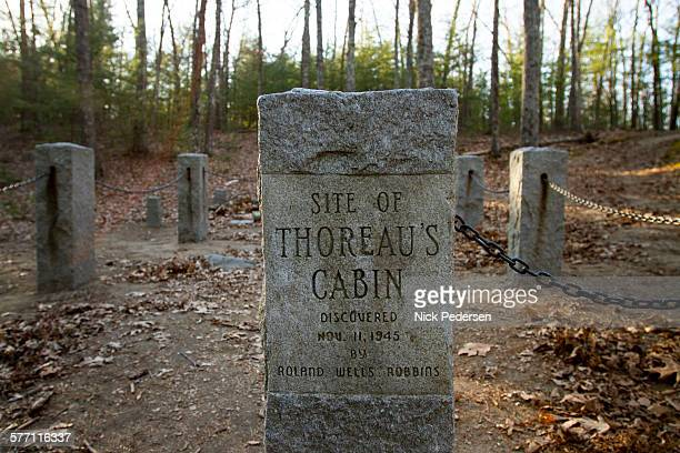 site of thoreau's cabin - walden pond stock pictures, royalty-free photos & images