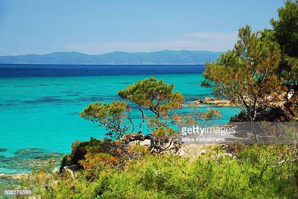 sithonia coast line, greece wild beach - peninsula de grecia fotografías e imágenes de stock