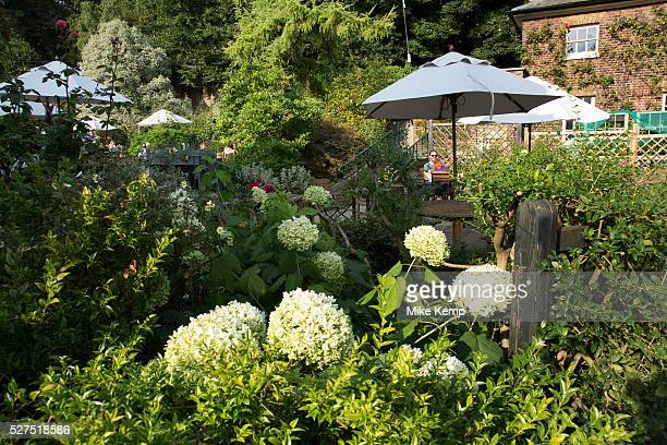 Sitting in the cafe garden at The Brew House Kenwood House Hampstead Heath is a large ancient London park covering 320 hectares This grassy public...