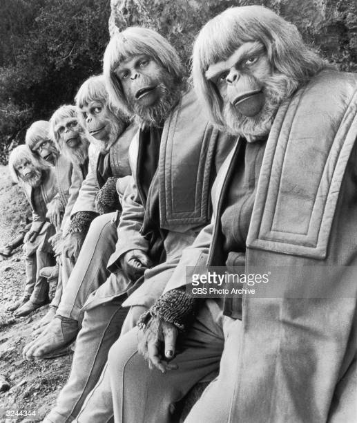 Six actors dressed in costume as apes sit outdoors in a still from the science fiction television series 'Planet of the Apes'