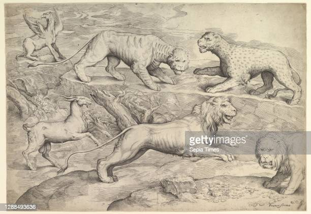 Six Animals, Etching and engraving, second state, sheet: 13 7/16 x 19 3/8 in. Trimmed to platemark, Prints, Battista Franco .