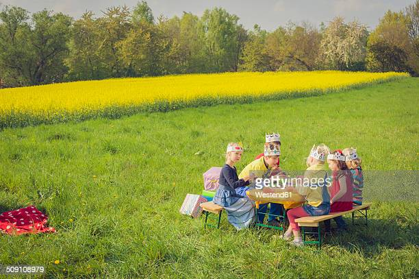 six children with paper crowns celebrating birthday on a meadow - happybirthdaycrown stock pictures, royalty-free photos & images
