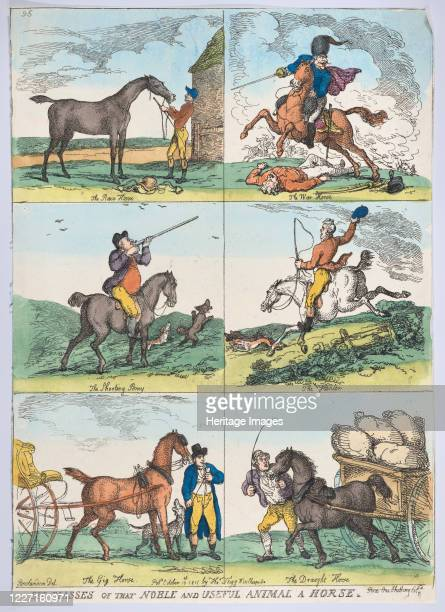 Six Classes of the Noble and Useful Animal a Horse October 10 1811 Artist Thomas Rowlandson