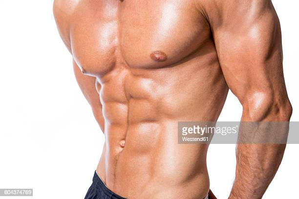 Six pack of muscular man in front of white background, close-up