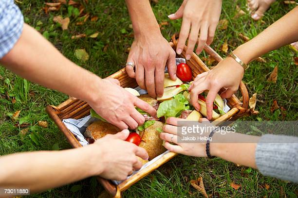 Six people reaching for food in picnic basket, elevated view