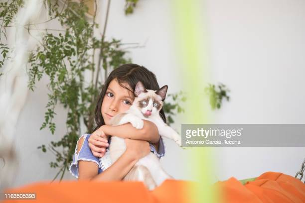 six years old girl with little cat in patio outdoors - 6 7 years stock pictures, royalty-free photos & images