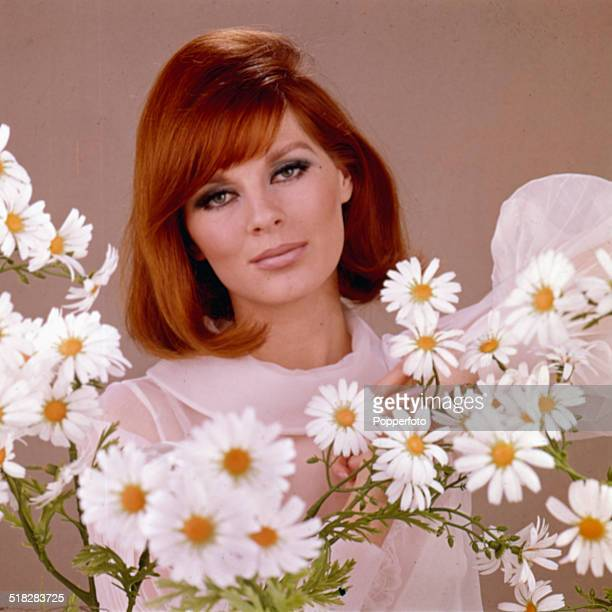 Sixties Fashion Head and shoulder portrait of a young female model wearing a sheer chiffon blouse in pink with daisies circa 1965