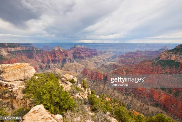 bright angel canyon - jeff goulden stock pictures, royalty-free photos & images
