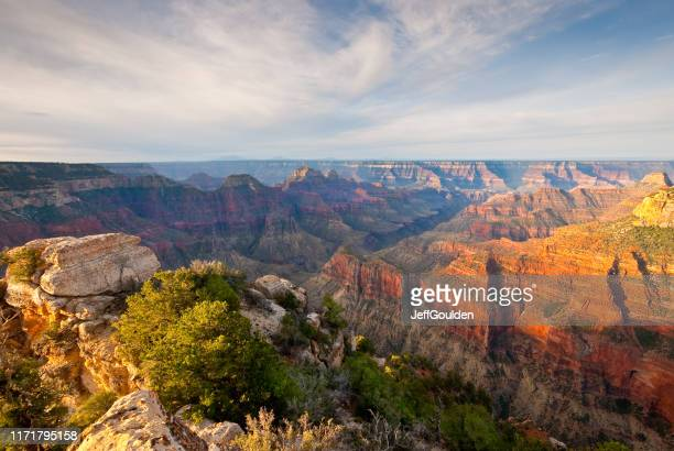 bright angel canyon at sunrise - arizona stock pictures, royalty-free photos & images