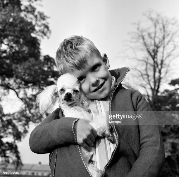 Sixyearold Richard Brown with his miniature white Poodle 'Dewdrop' 27th October 1963