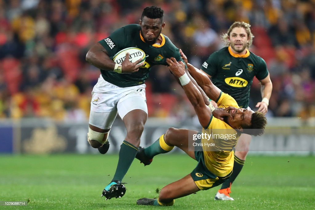 Australia v South Africa - The Rugby Championship : News Photo