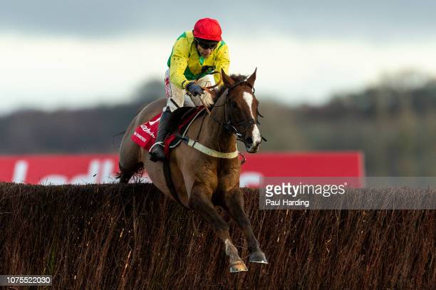 Sizing Tennessee ridden by Tom Scudamore jumps the last fence and goes on to win the 1500 Ladbrokes Trophy Chase at Newbury Racecourse on December 01...