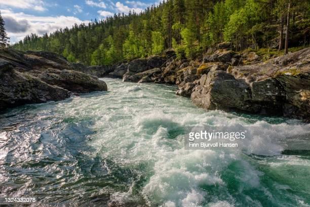 sjoa ravin in oppland norway - finn bjurvoll stock-fotos und bilder