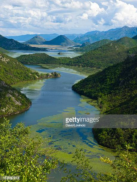 skadar lake - albania stock pictures, royalty-free photos & images