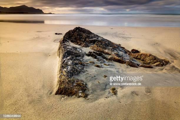 skagsanden beach flakstadt lofoten v - reise stock pictures, royalty-free photos & images
